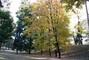Park ve městě