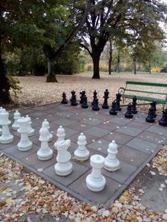 FOTKA - Opuštěná šachovnice