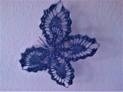 FOTKA - Modrý motýl