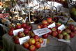zahradkarska vystava,jablicka
