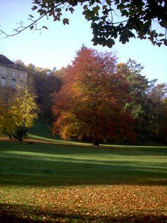 FOTKA - podzim a kousek zamku