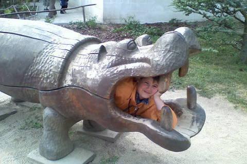 FOTKA - dinopark