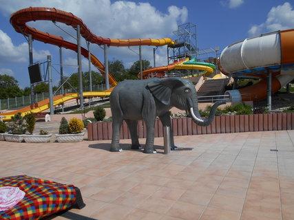 FOTKA - Koutek pro děti se slonem pro štěstí