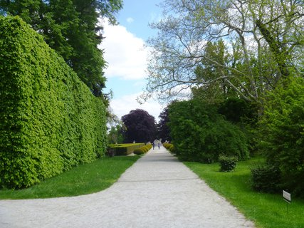 FOTKA - Č.Krumlov - zahrada