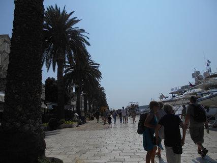 FOTKA - Ostrov Hvar - město Hvar promenáda s palmami