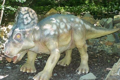 FOTKA - dinosauři