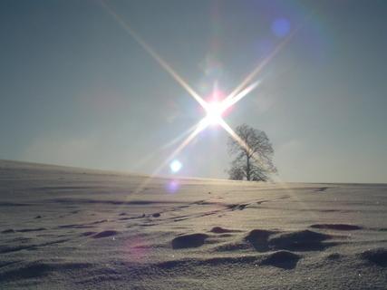 FOTKA - Prosluněný sníh