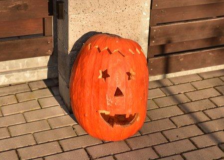 FOTKA - dýně na Halloween