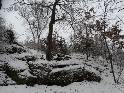 FOTKA - zima na Jestřebí