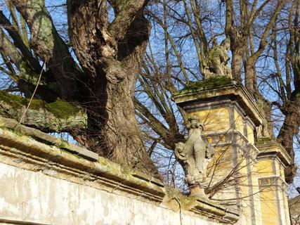 FOTKA - ukrytá socha ve větvích