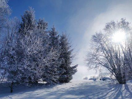 FOTKA - Zimni rano