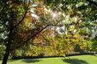 Dnes - z podzimní procházky