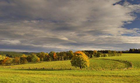 FOTKA - vybarvený podzim