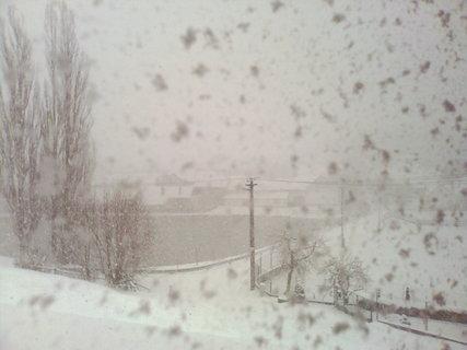 FOTKA - Husté sněžení
