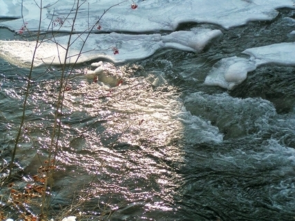 FOTKA - zima 2003