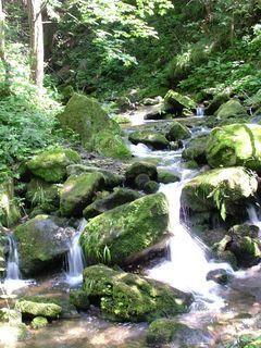 FOTKA - krása vody....