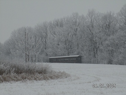 FOTKA - konečně zima 8