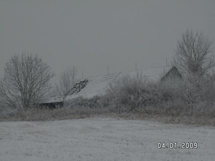 FOTKA - konečně zima 7