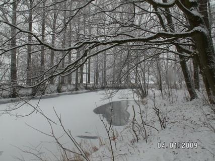 FOTKA - konečně zima 5
