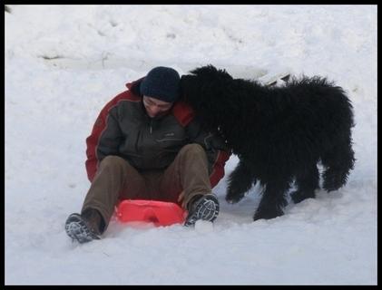 FOTKA - zimní radovánky