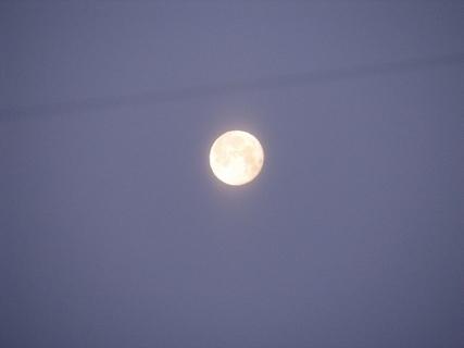 FOTKA - Měsíc v úplňku.