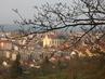 Boskovický kostel