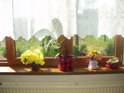 FOTKA - Nová plastová okna - zlatý dub