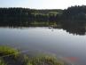 Domanínský rybník\\\