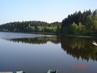 Domanínský rybník,