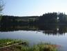 §§§Domanínský rybník