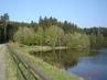 ,Domanínský rybník,,