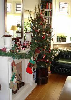 FOTKA - Krb a vánoční stromek