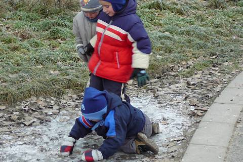 FOTKA - Našli jsme led