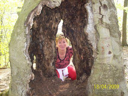 FOTKA - Za stromom