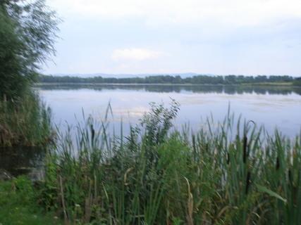 FOTKA - Chomoutovské jezero