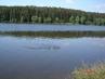 Domanínský rybník.....