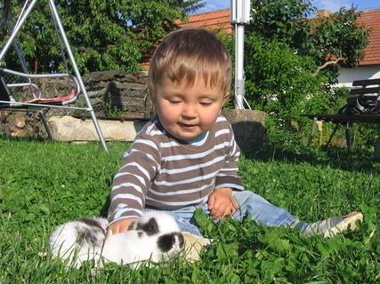 FOTKA - Adámek si hraje s mazlíkem