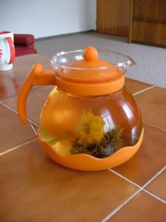 FOTKA - Kvetoucí čaj