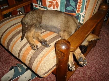 FOTKA - Hluboký spánek