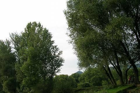 FOTKA - příroda