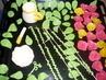 marcipánové růžičky na dort..