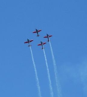 FOTKA - letíme k modré obloze