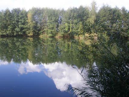 FOTKA - Chomoutovské jezero 3