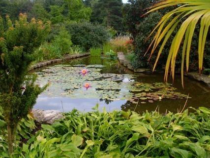 FOTKA - botanická v Teplicích