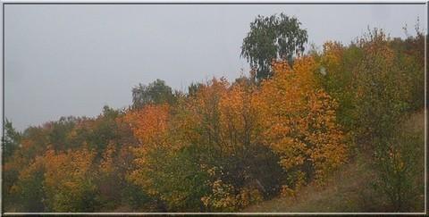 FOTKA - podzim 25
