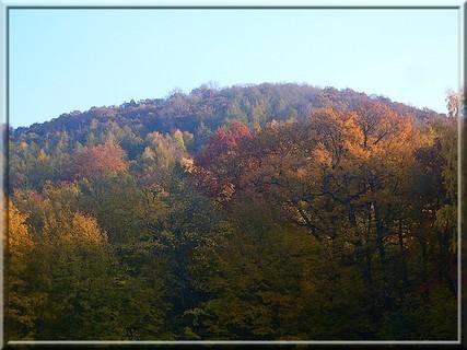 FOTKA - krásy barev11