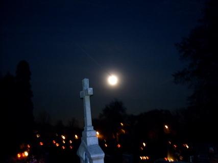 FOTKA - na  hřbitově
