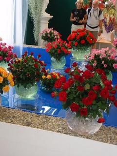 FOTKA - vázy s kyticemi