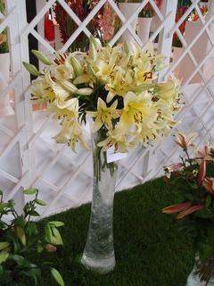 FOTKA - váza s liliemi