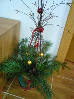 FOTKA - vánoční dekorace.